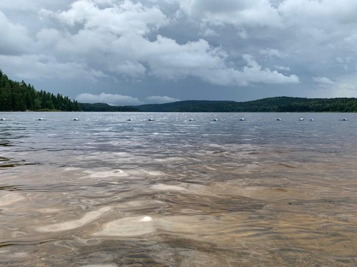 Озёра, леса и грибные места национального парка LaMauricie